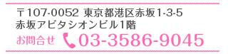 電話番号03-3586-9045